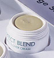Perfect Cover Cream 02