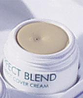Perfect Cover Cream 03