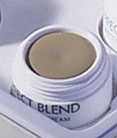 Perfect Cover Cream 05